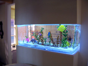 Baxter Pointe Villa Dollhouse Fishtank